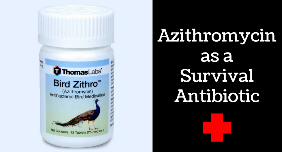 Cheapest prices for zithromax